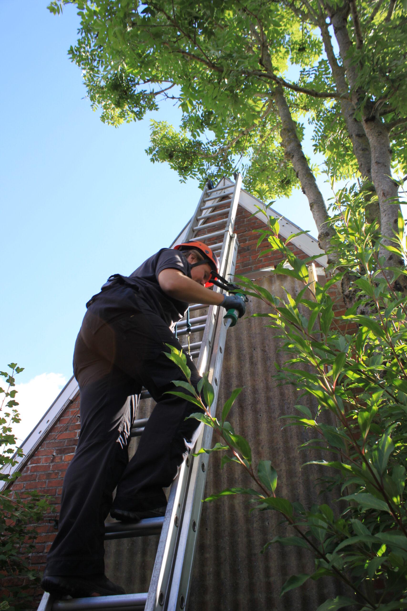 Inspectie door monumentenwacht